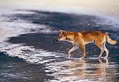 MAM 37 KH0001 01