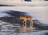 MAM 37 KH0002 01