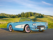 VET 03 RK0738 01