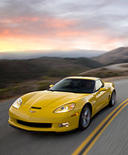 VET 01 RK0905 02