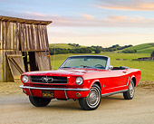 MST 01 BK0008 01