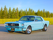 MST 01 BK0013 01