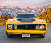 MST 01 BK0019 01