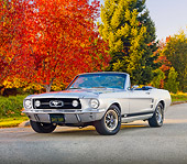 MST 01 RK1196 01