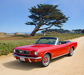 MST 01 RK1337 01