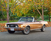 MST 01 RK1458 01