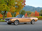 MST 01 RK1461 01