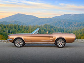 MST 01 RK1462 01