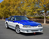 MST 01 RK1667 01