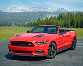 MST 01 RK1684 01