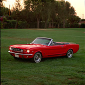 MST 01 RK0066 03