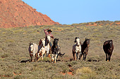 PEO 04 AC0006 01