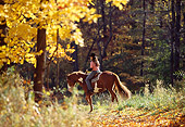 PEO 04 DS0003 01
