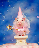 PIG 01 RK0034 35