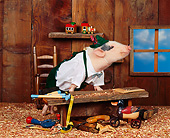 PIG 01 RK0046 20