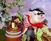 PIG 01 RK0236 05