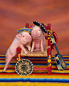 PIG 01 RK0001 13