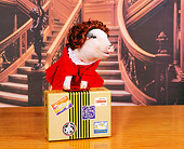 PIG 01 RK0045 08