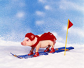 PIG 01 RK0101 11