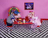 PIG 01 RK0233 02