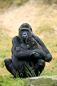 PRM 01 AC0020 01