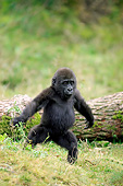PRM 01 AC0021 01