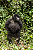 PRM 01 MC0020 01