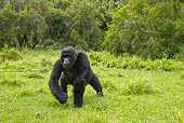 PRM 01 MC0027 01