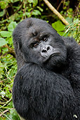 PRM 01 MC0128 01