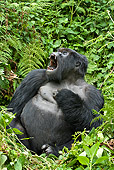 PRM 01 WF0019 01