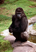 PRM 01 RK0025 04