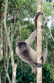 PRM 02 GL0021 01