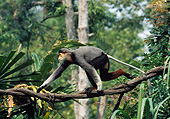 PRM 02 GL0024 01