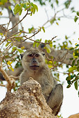 PRM 02 JM0002 01