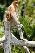 PRM 02 MC0017 01