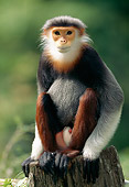 PRM 02 MH0023 01
