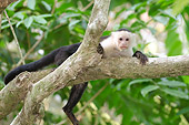PRM 02 NE0006 01