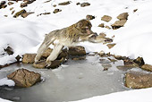 PRM 02 WF0007 01