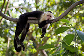 PRM 02 KH0001 01