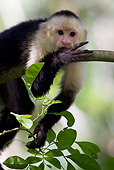 PRM 02 KH0002 01