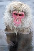 PRM 02 KH0005 01