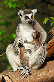 PRM 03 AC0026 01