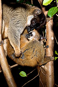 PRM 03 MC0002 01