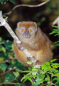 PRM 03 MH0027 01