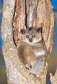 PRM 03 MH0044 01