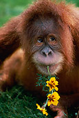 PRM 05 RK0076 03