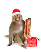 PRM 06 RK0062 01