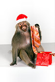 PRM 06 RK0061 01