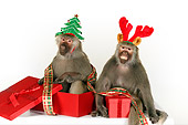 PRM 06 RK0078 01