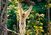 PRM 10 RK0015 01